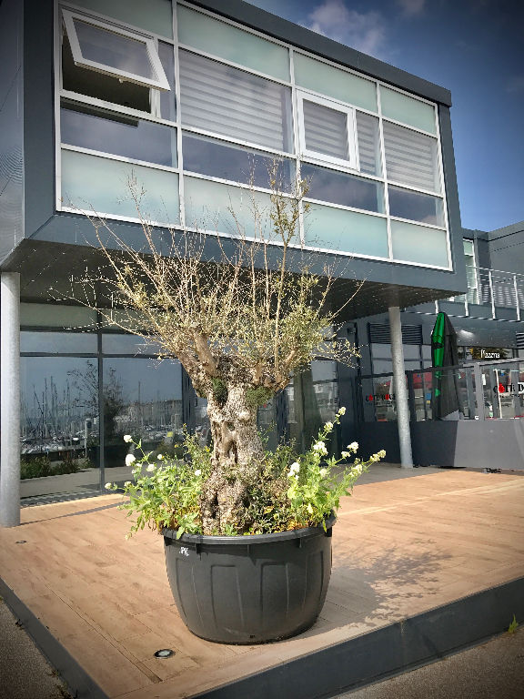 Local commercial Brest 108 m2
